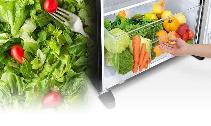 Tủ lạnh Mitsubishi Electric 376 lít MR-FX47EN-GBK-V (2 cửa) ngăn rau quả lớn