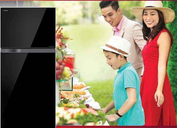 Tủ Lạnh TOSHIBA Inverter 305 Lít GR-AG36VUBZ
