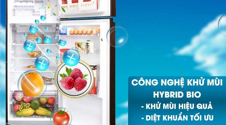 Công nghệ Hybrid Bio - Tủ lạnh Toshiba Inverter 305 lít GR-AG36VUBZ XB1