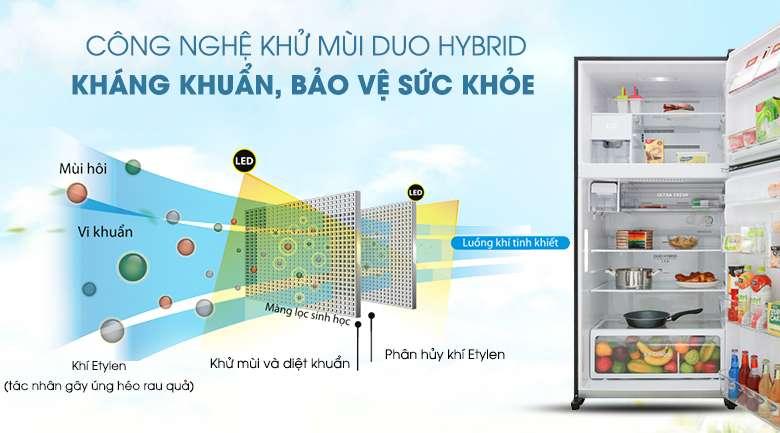 Tủ lạnh Toshiba Inverter 555 lít GR-AG58VA GG  - Khử mùi, kháng khuẩn cao bởi công nghệ Duo Hybrid